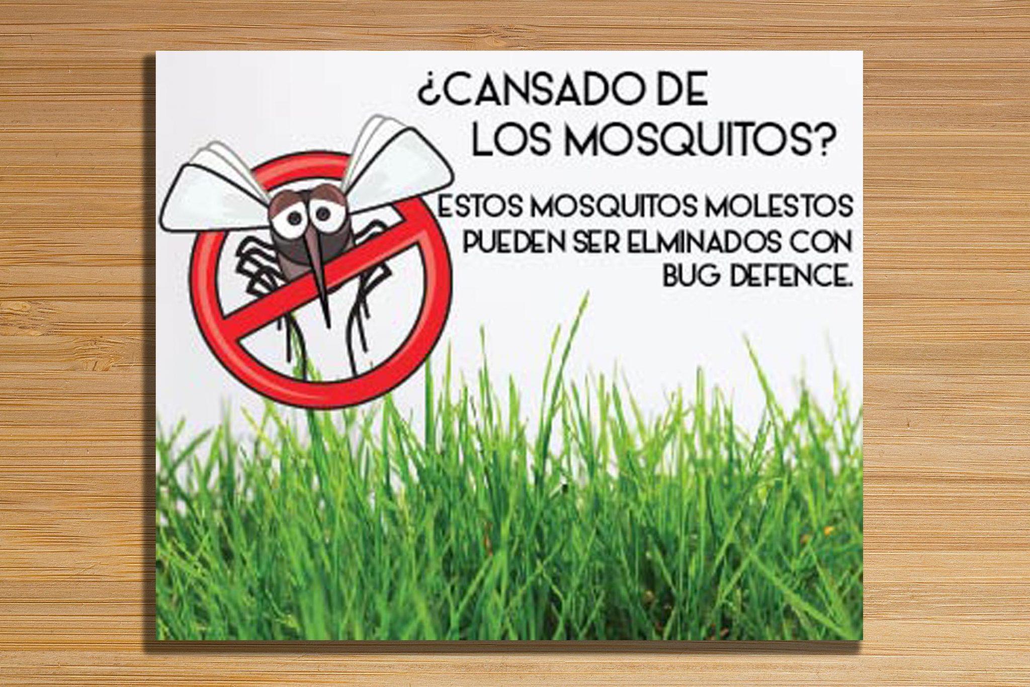 Diseño de Banner Web en Panamá